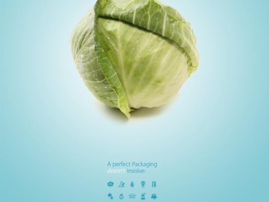 WWF Print Ad -  Cabbage