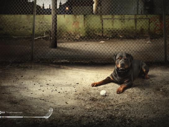 Zone Print Ad -  Dribble dog