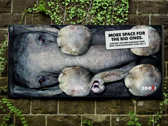 Zoo Zurich Outdoor Ad -  More Space for the Big Ones, Horizontal
