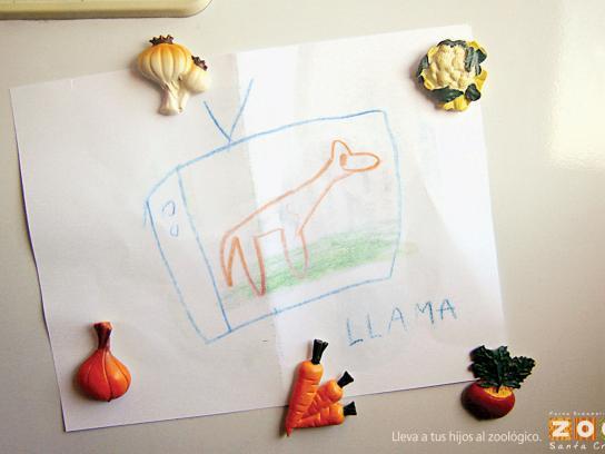 Santa Cruz Zoo Print Ad -  Llama