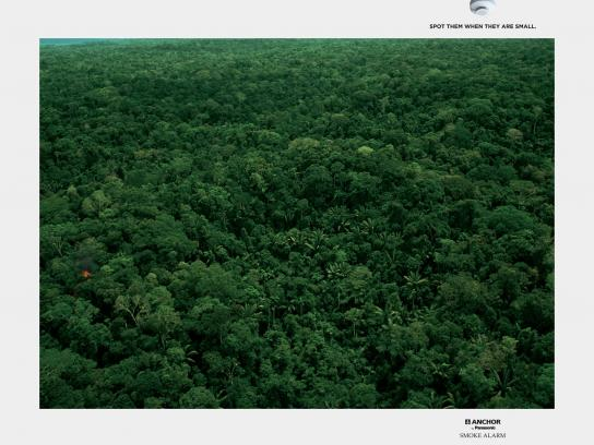 Panasonic Print Ad -  Jungle, 3