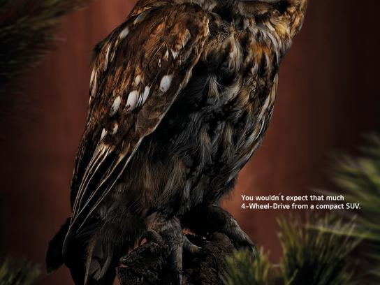 KIA Print Ad -  Owl
