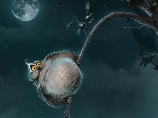 King Koil Print Ad - Owl