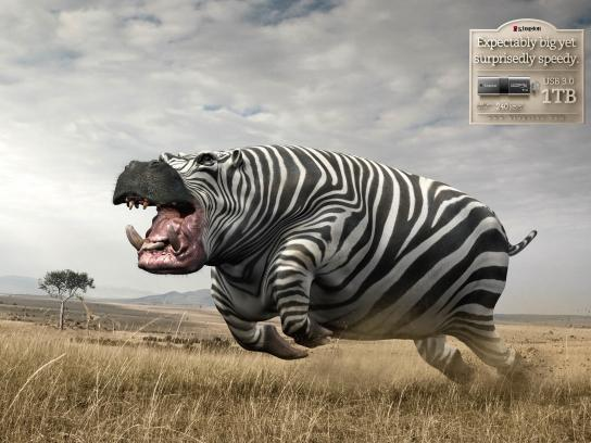 Kingston Print Ad -  Hippo-Zebra