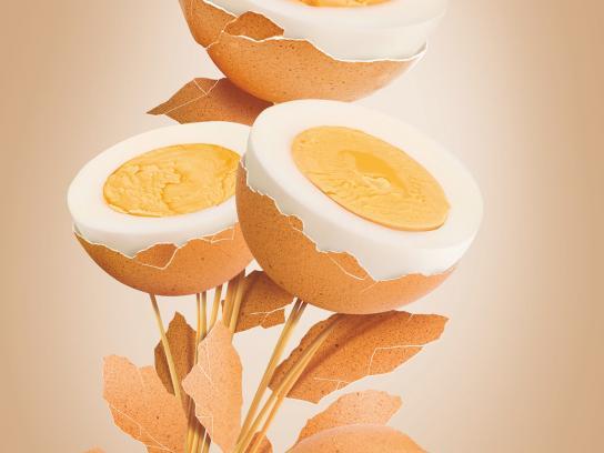 Koroplast Print Ad -  Eggs