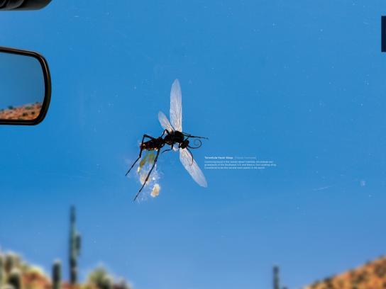 Land Rover Print Ad -  Tarantula Hawk Wasp