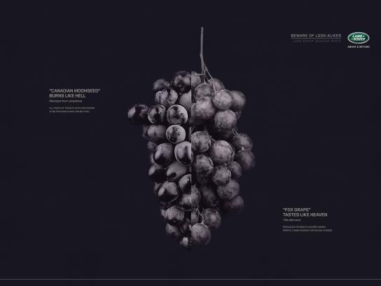 Land Rover Print Ad -  Grapes