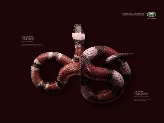 Land Rover Print Ad -  Snake