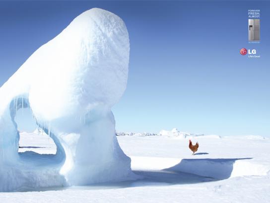 LG Print Ad -  Antarctica Chicken