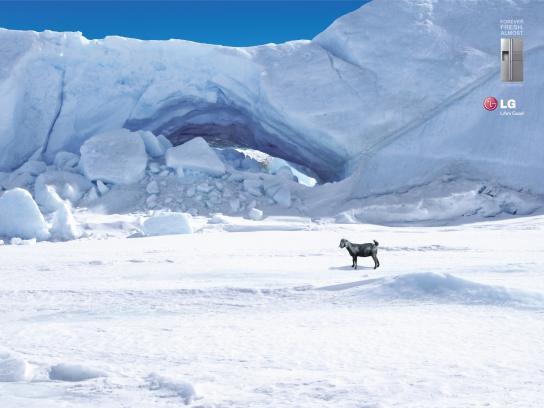 LG Print Ad -  Antarctica Goat