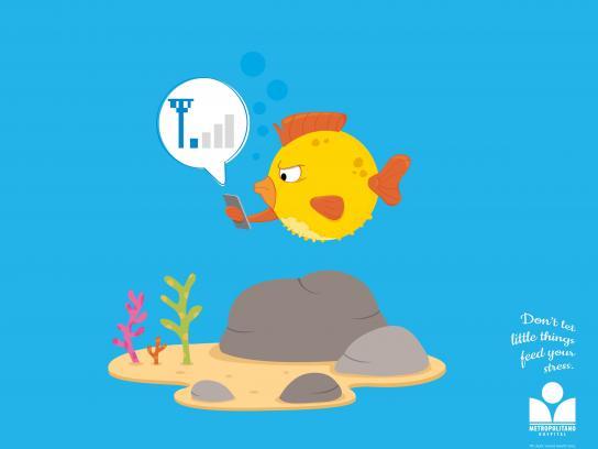 Hospital Metropolitano Print Ad -  Little Things, Puffer Fish