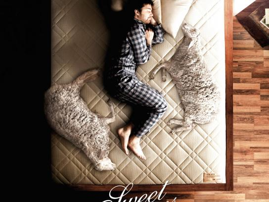 Lonas Print Ad -  Sweet dreams