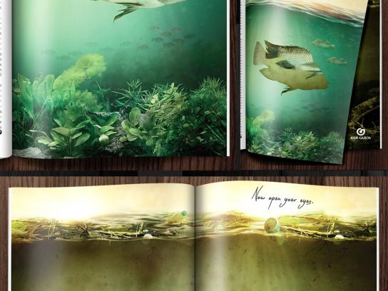 Rede Gazeta Print Ad -  Scientific diagnosis of river Rio Doce, 1