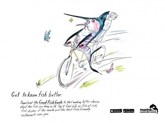 Marine Conservation Society Print Ad -  Get to know fish better, 2