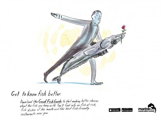Marine Conservation Society Print Ad -  Get to know fish better, 4
