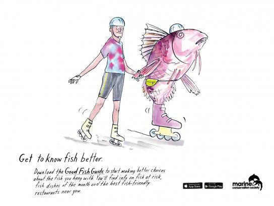 Marine Conservation Society Print Ad -  Get to know fish better, 1