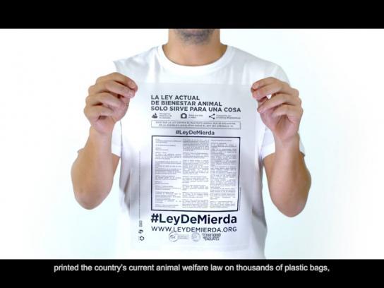 Territorio de Zaguates Direct Ad - #ShitLaw