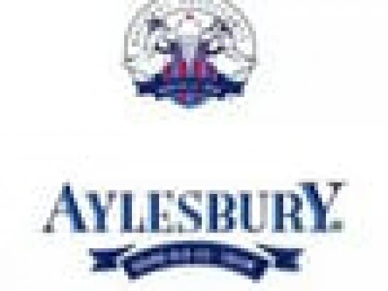 Aylesbury Audio Ad -  Bad choice, good choice