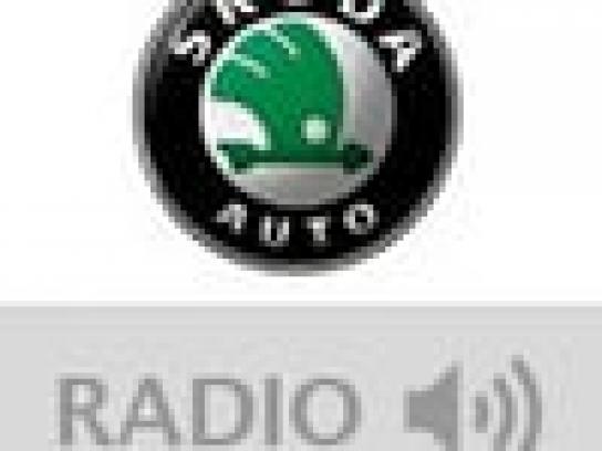 Skoda Audio Ad -  DJ Turkey
