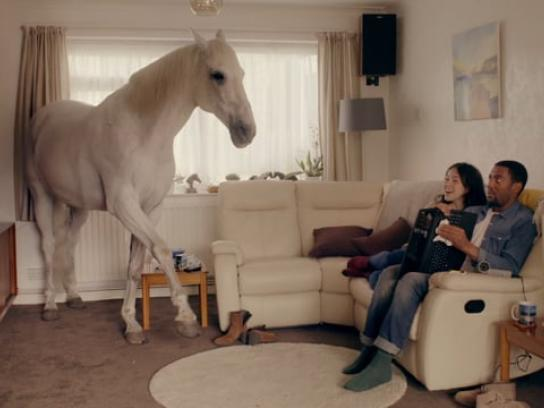 Ageas Film Ad - Inside horse