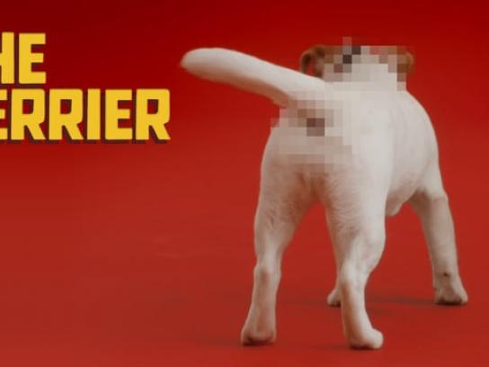 Schmackos Film Ad - The Terrier