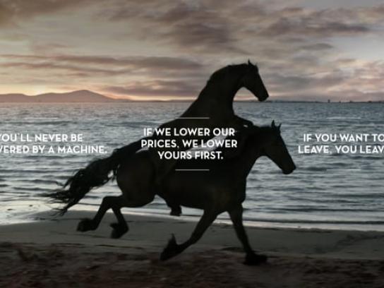 Pepephone Film Ad - Horse: Maximilian