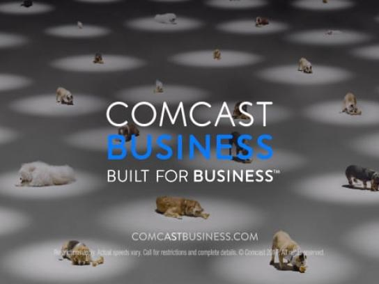 Comcast Film Ad - Dog
