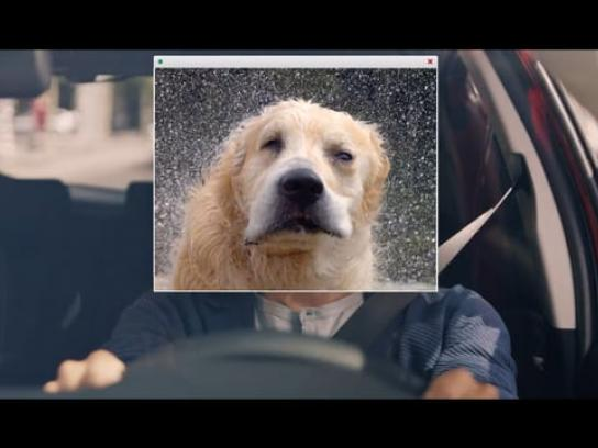 Toyota Film Ad - Dogs - Film 1