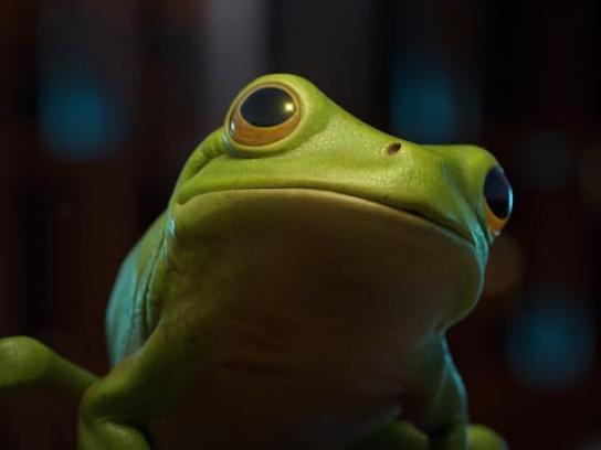 McDonald's Film Ad - The Frog