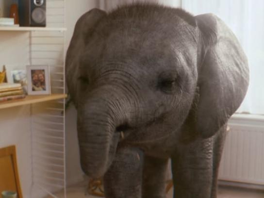 KP Nuts Film Ad - Elephant