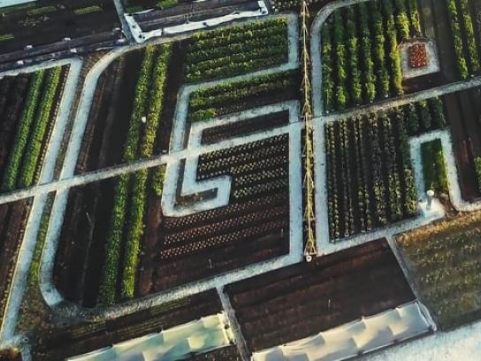 IGA Ambient Ad - Organic Vegetable Garden