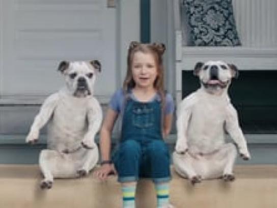 Lance Crackers Film Ad - Dog Sandwich