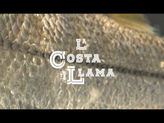 Los Curricanes Film Ad -  La Costa Te Ama, 1