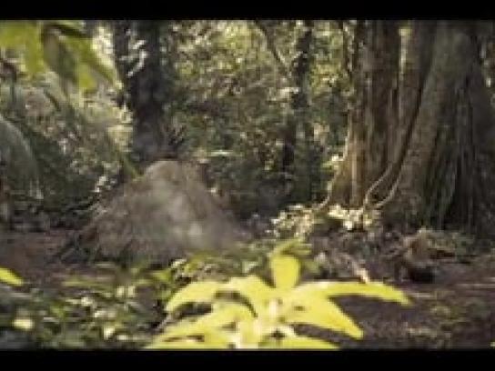 Pringles Film Ad -  Tribe