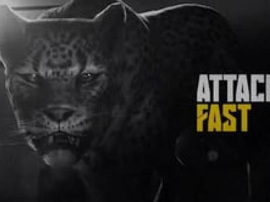 Nike Film Ad -  Different Animal. Same Beast.