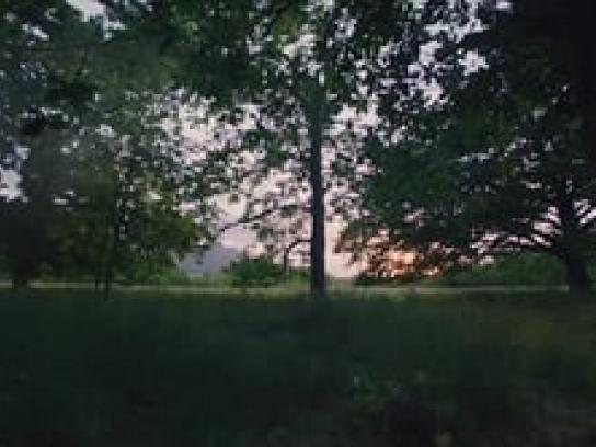 Hallmark Film Ad -  Motherbird