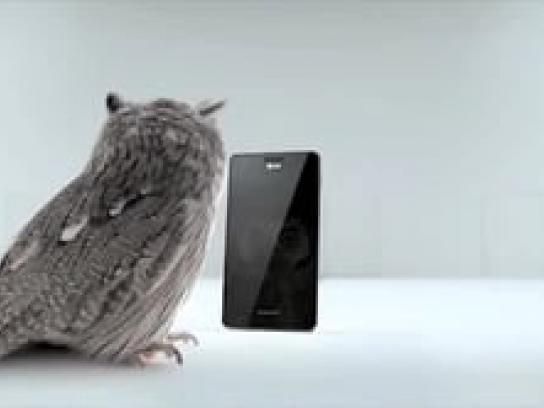 AT&T Film Ad -  Owl