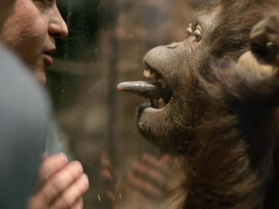 Marathon Petroleum Film Ad - Zoo
