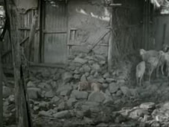Johnnie Walker Film Ad -  Haile Gebrselassie