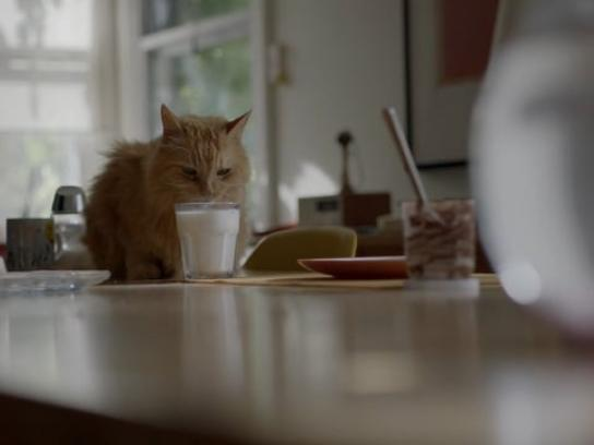 Nutrilait Film Ad - The Milk Waltz