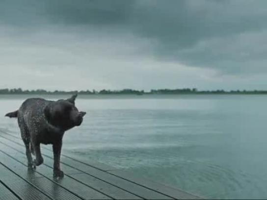 WestlandUtrecht Film Ad -  Lake