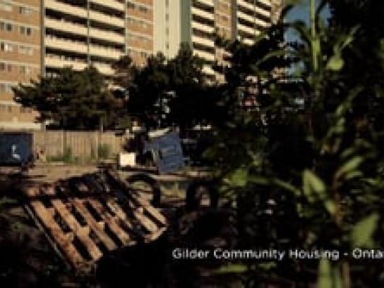 KIA Film Ad -  Garden
