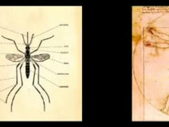 Esemmat Ambient Ad -  Laser-pointer warhead for esammat mosquito killer