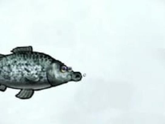 WMF Film Ad -  Fish