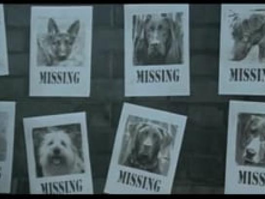 ENPA Film Ad -  Missing