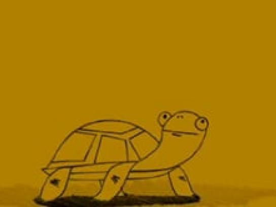 Deliciously Mellow Film Ad -  Turtle