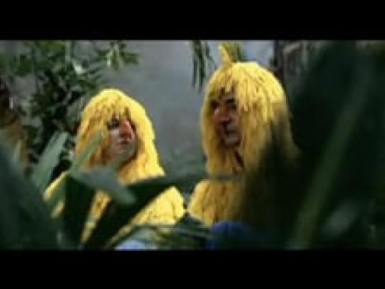 Sympatex Film Ad -  Parrots