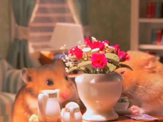 Minnesota State Lottery Film Ad -  Tea party