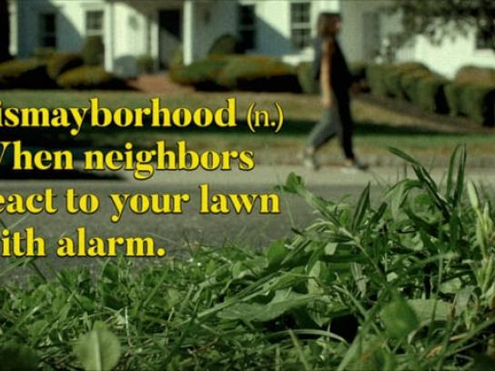 Lawn Doctor Digital Ad - Suburban Dictionary: Dismayborhood