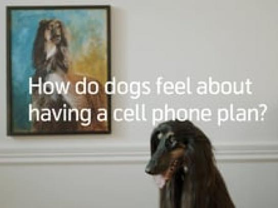 Telenor Film Ad - Now Dogs Have A Cell Phone Subscription (in Sweden)